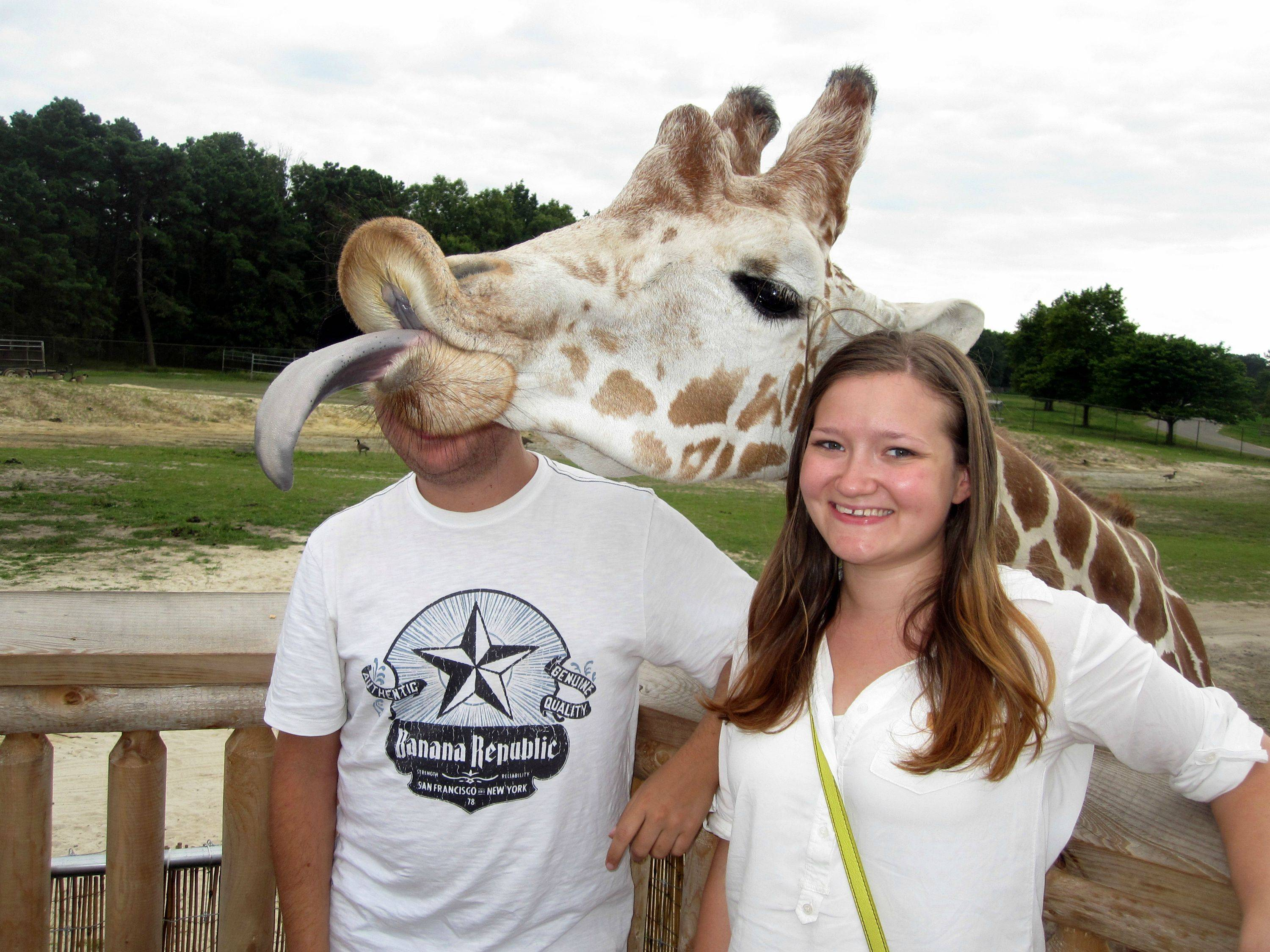 Photo of the Day: Photobombing Giraffe