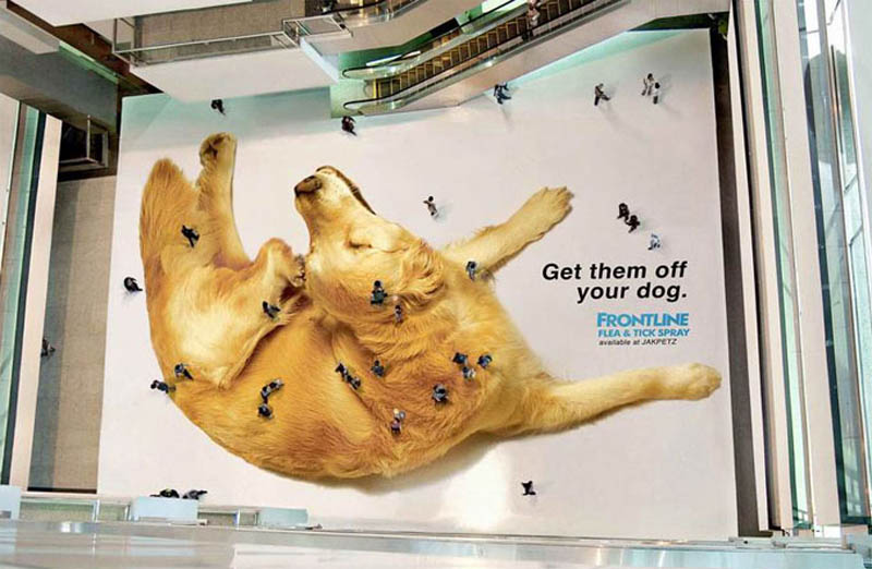 aerial overhead shot of floor sticker ad with a giant dog that makes people look like fleas and ticks