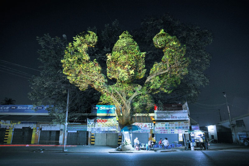 Impressive 3D Images Projected Onto Trees #4