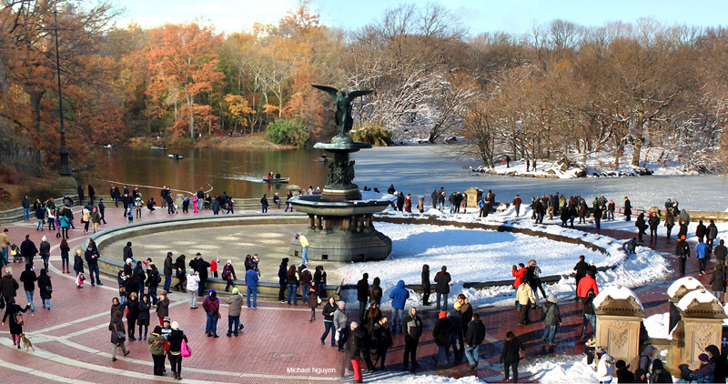 Photo of the Day: Central Park 90 Days Apart