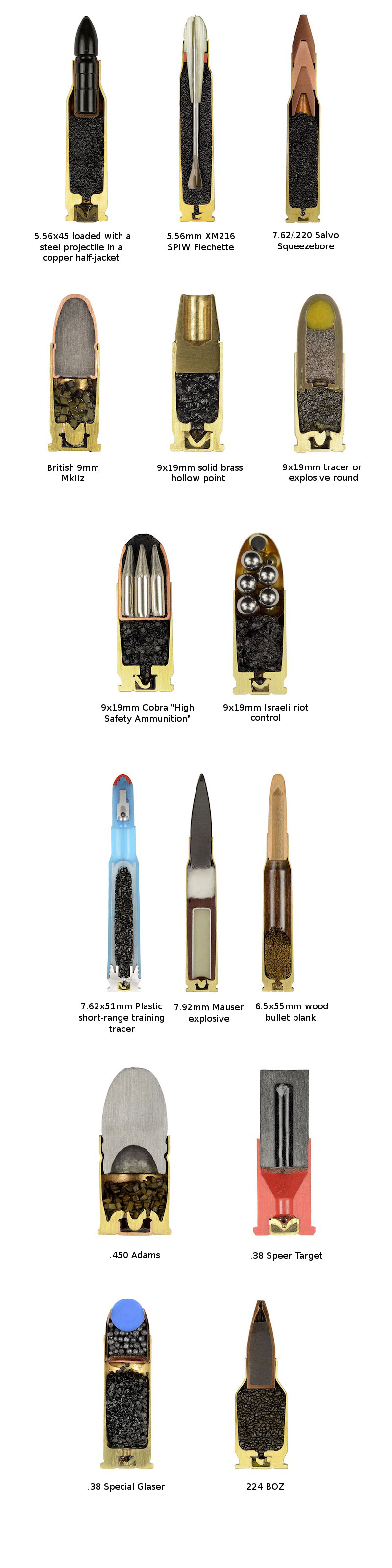 cross sections of ammo sabine pearlman (7)