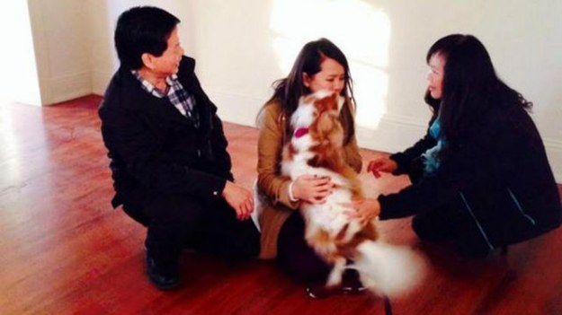 The Dallas Nurse Who Survived Ebola Had A Heartwarming Reunion With Her Dog