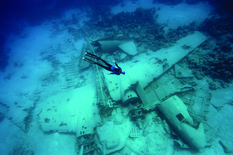 Photo of the Day: Freediving an Airplane Wreck