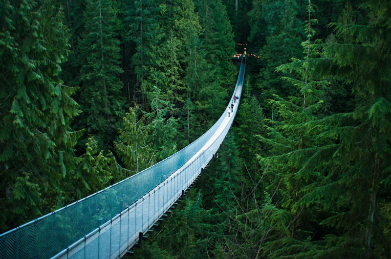 Photo of the Day: The Capilano Suspension Bridge in Vancouver