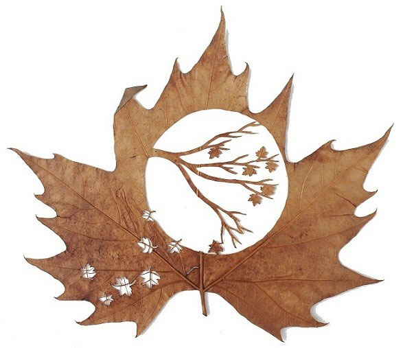 13. Precision cut leaf artwork by Lorenzo Duran