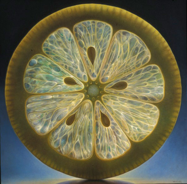 translucent oil paintings of fruit by Dennis Wojtkiewicz (9)