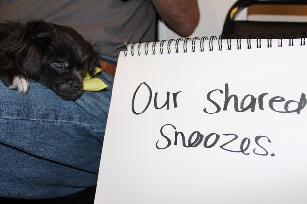 """Our shared snoozes."""