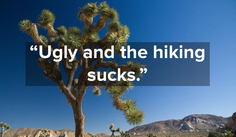 1 star yelp reviews of national parks (5)