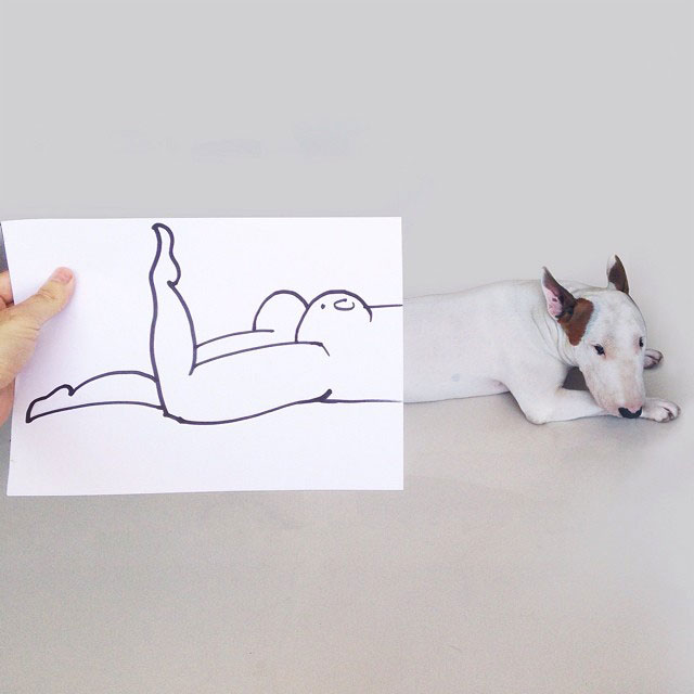 Rafael mantesso Takes Portraits of His Bull Terrier and Illustrates the Background (3)
