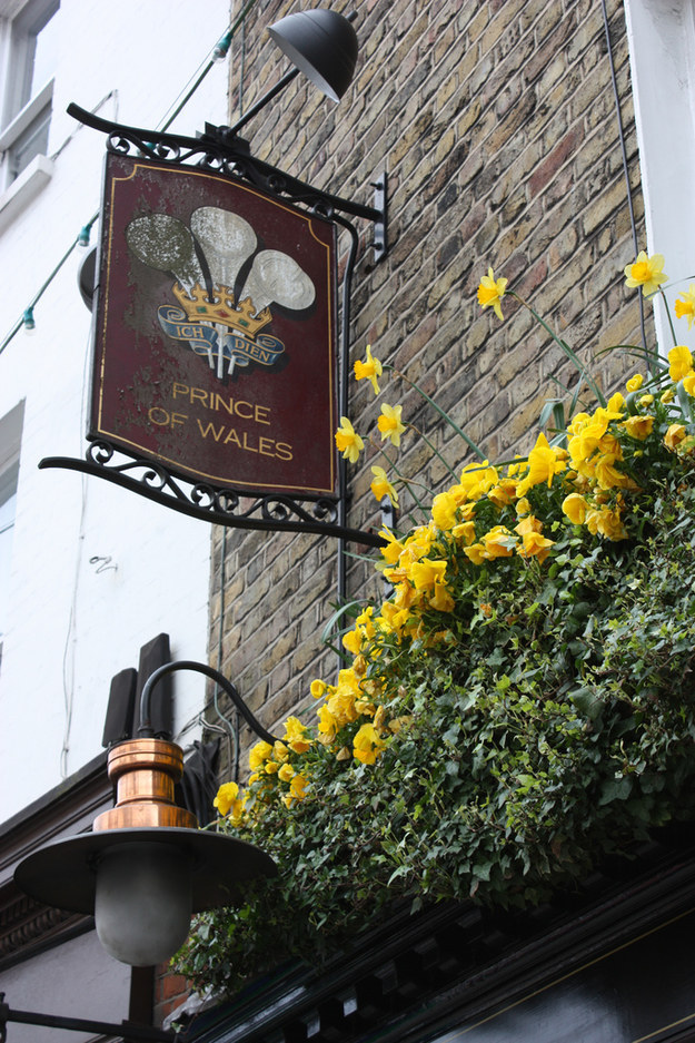 Prince of Wales, Highgate