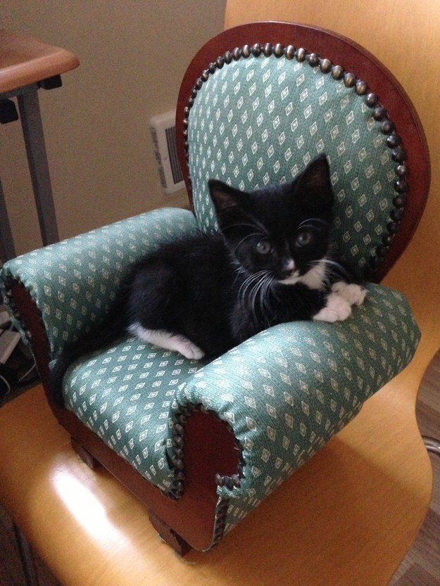 """""""I think this chair was made JUST FOR ME."""""""