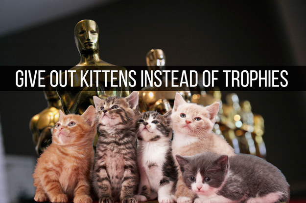 The Oscars Made Better By Kittens