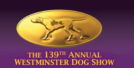 This week I attended the Westminster Dog Show, America's #1 purebreed dog competition.