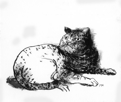 10 Gorgeously Illustrated Haiku For Every Cat Person
