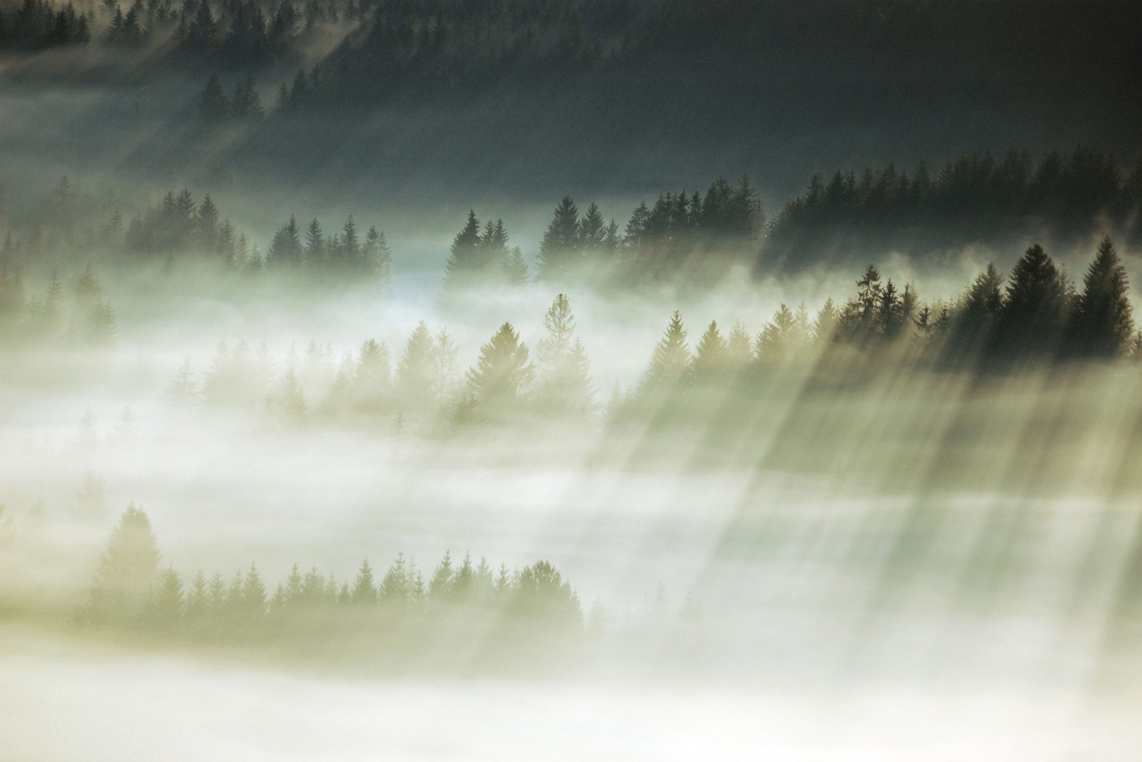 13 Beautiful Photos Of The Beskidy Mountains In Poland - BuzzFeed News