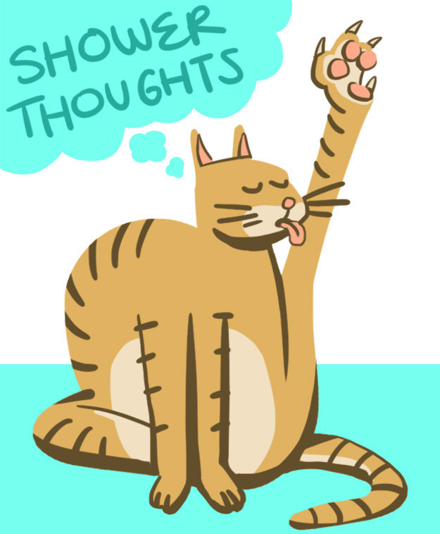 13 Profound Shower Thoughts All Cats Have