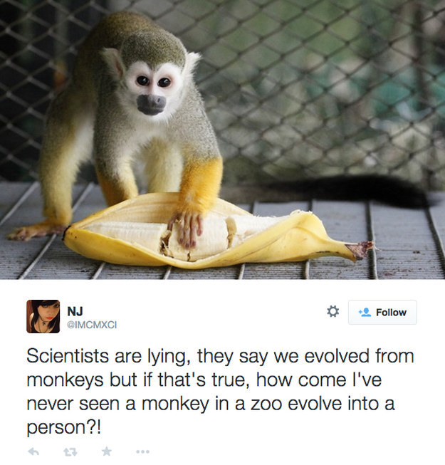 22 People Who Have A Solid Handle On This Whole Evolution Thing