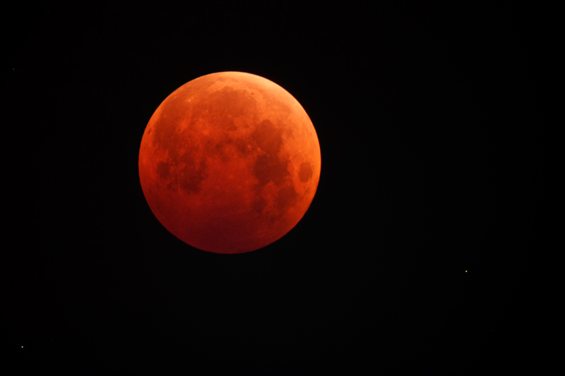 5 Brilliant Captures of the October 8 'Blood Moon'