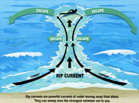 how to escape a rip tide