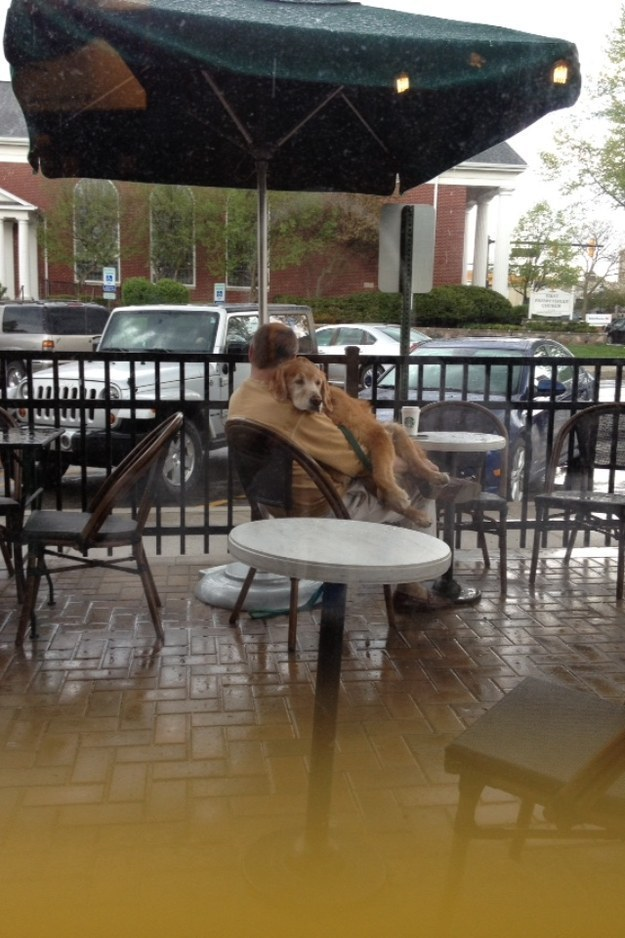 And finally, this guy who held on tight to his best bud until the rainstorm was through.