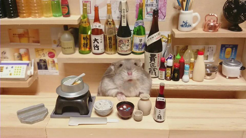 Hamster Shopkeepers Running Restaurants and Bars
