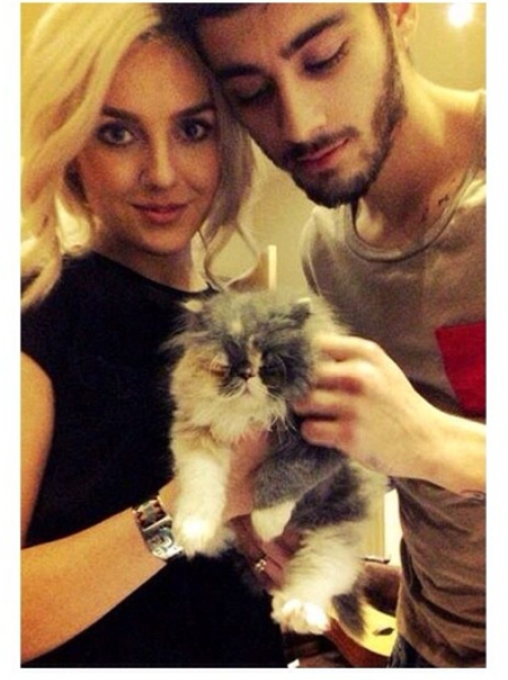 Zayn Is Leaving One Direction, Here Is Zayn With Small Animals To Soothe Your Tears