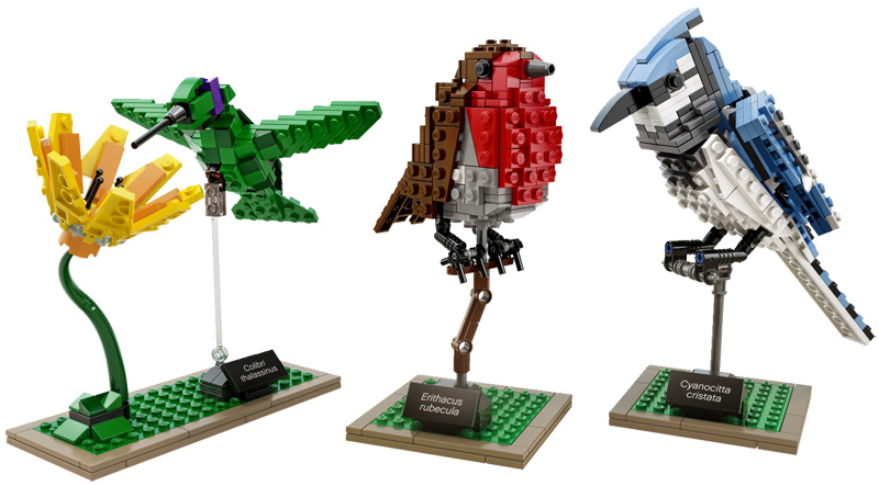 LEGO Birds by Tom Poulsom (5)