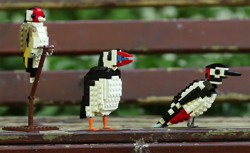 LEGO Birds by Tom Poulsom (2)