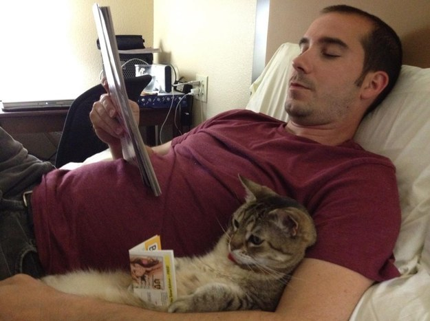 No cat is going to be your reading buddy.