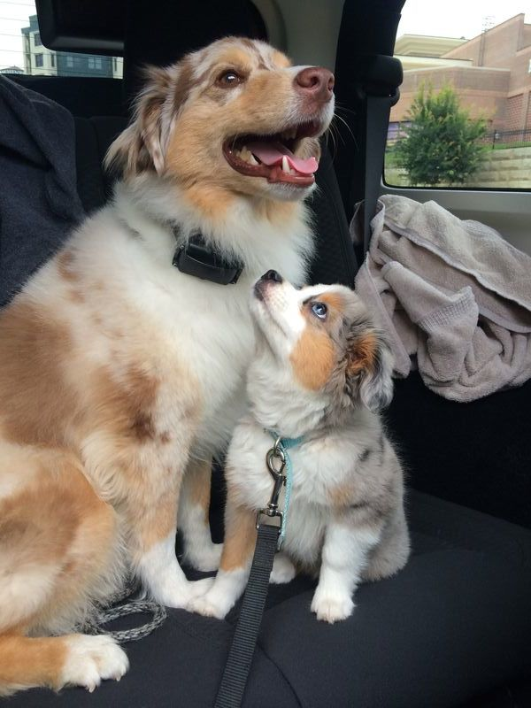 """""""It's really great to know I get to keep my fluff."""""""