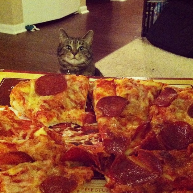 The distant longing you feel while you're waiting for your friends to ask if you want a slice.