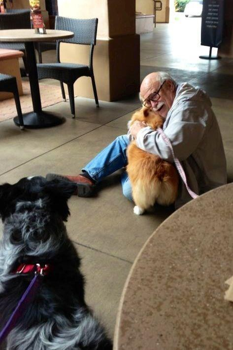 This friendly guy who gave the best hug ever to his handsome corgi buddy.