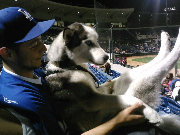 22 Times Humans Were A Dog's Best Friend
