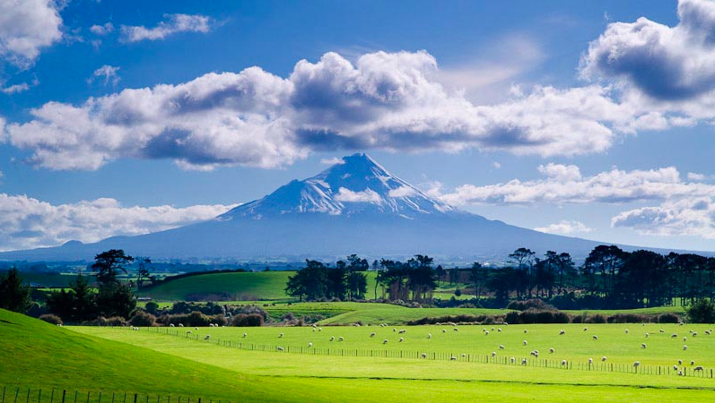 27 Reasons Why You Should Never Go To New Zealand