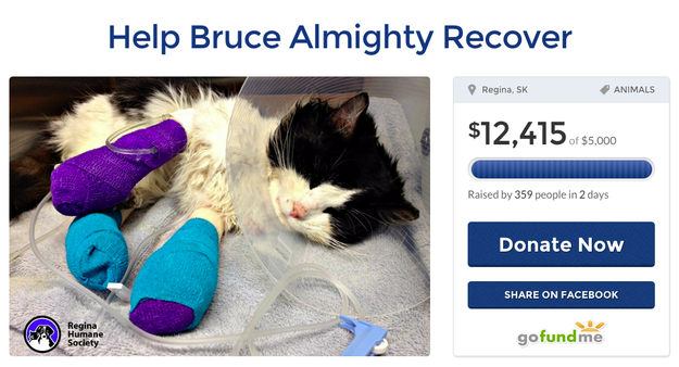 Well, his story spread fast. People have already donated over $12,000 to his recovery efforts.