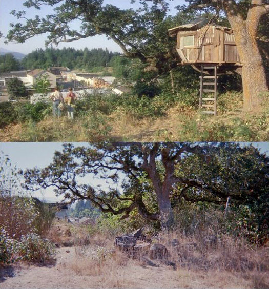 What Places from Stand By Me Look Like Today then and now (1)