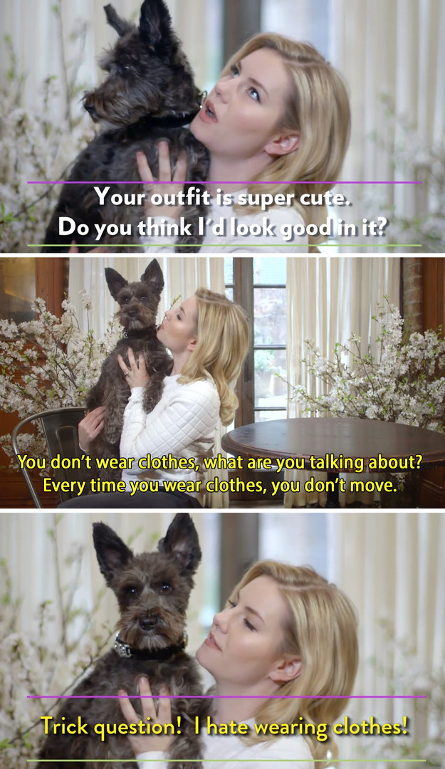 Elisha Cuthbert called out her dog for asking a trick question.