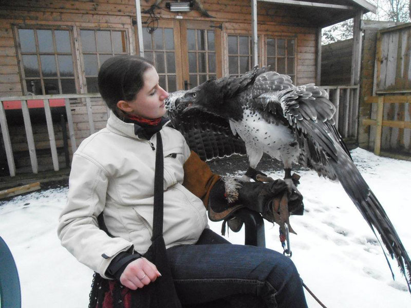 Handler Shares Her Amazing Images With Birds of Prey (3)