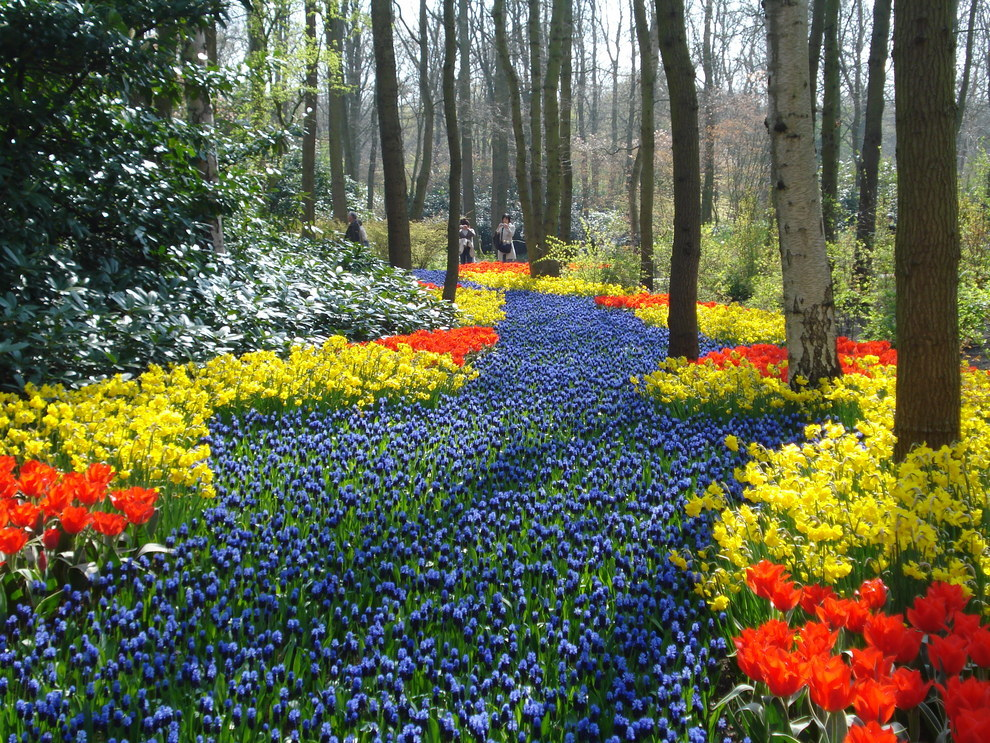 Keukenhof Park near Lisse, in Holland