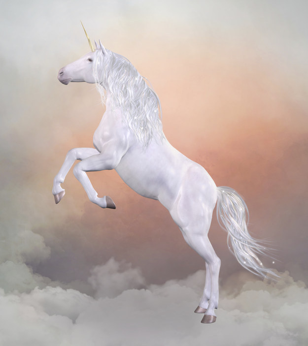 Make her feel like a beautiful unicorn floating in an oasis of heavenly bliss when she's with you.
