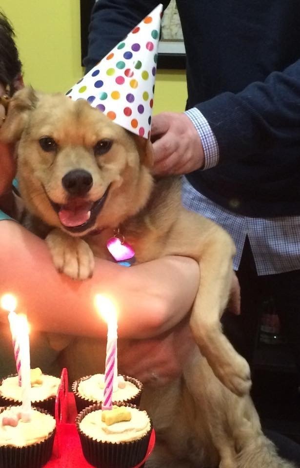 """""""IT'S MY BIRTHDAY. NO ONE CAN TOUCH MY INSANE LEVEL OF JOY."""""""