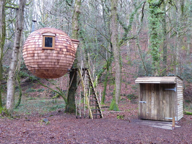 See the stars from the Lost Meadow Treepod