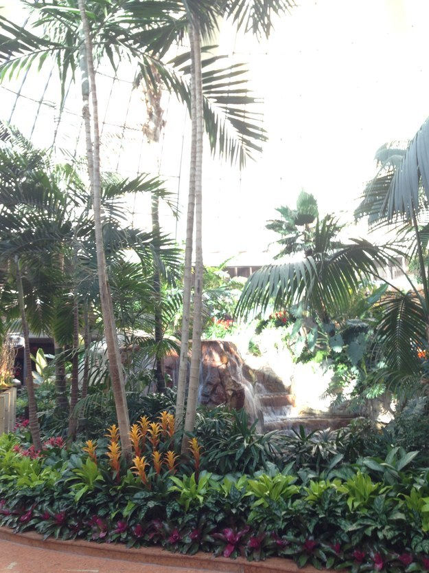 The Mirage also has an indoor jungle.