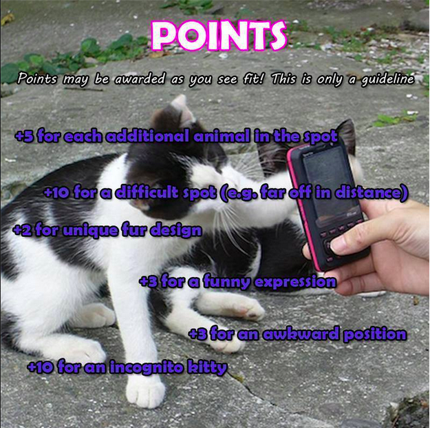 There is a point system, although it's rarely adhered to: