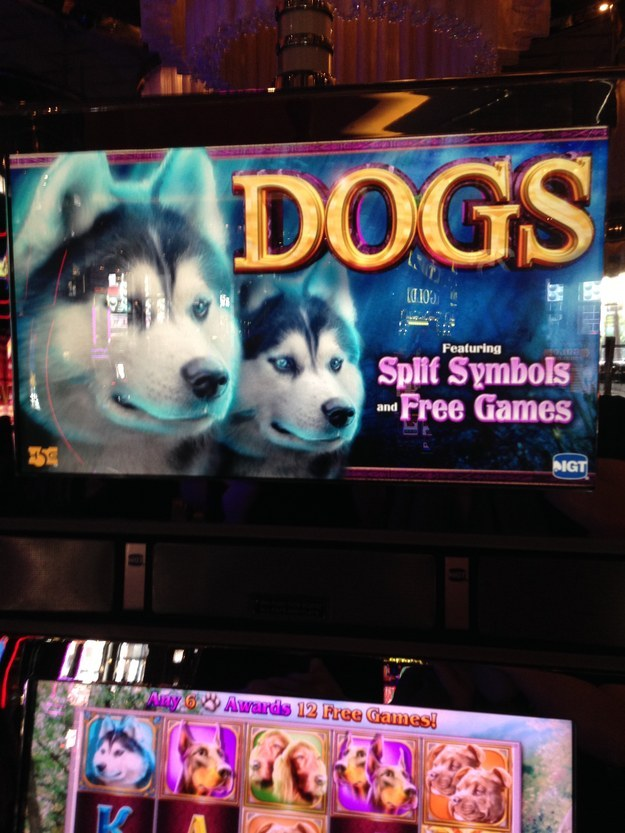 There is a slot machine for literally every theme.