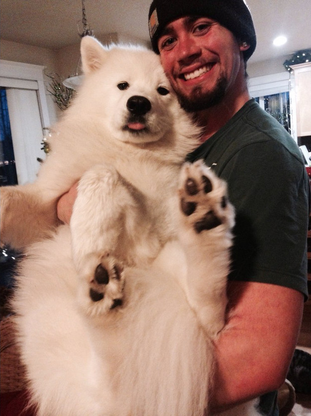 This guy who captivates everyone with his insane fluff.