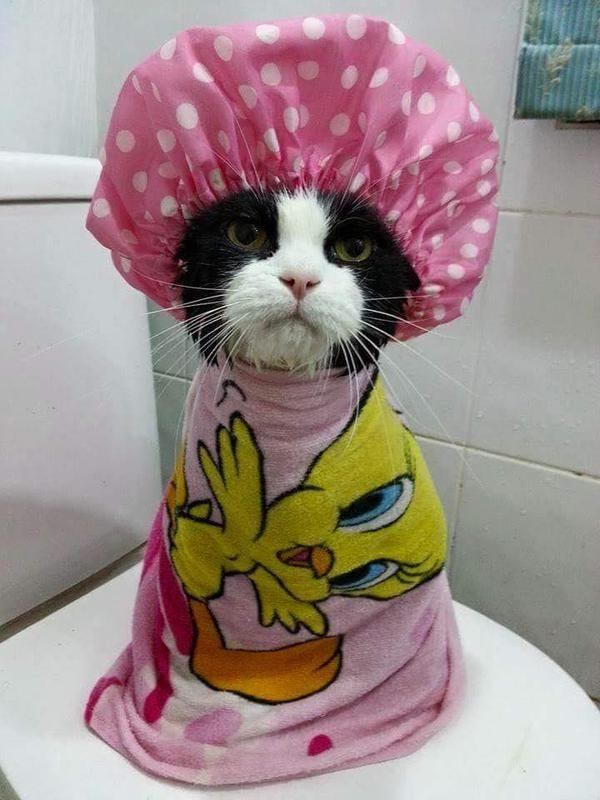 This lady who somehow made shower caps look cute.