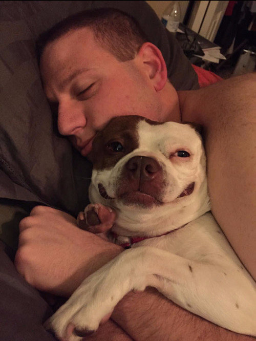 17 Dogs Who Could Steal Your Boyfriend