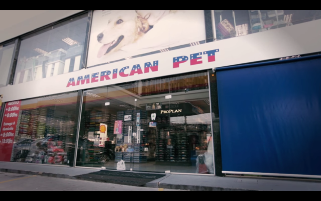 To prove their point, the employees of a Brazilian pet store chain called American Pet hid cameras all around the store.