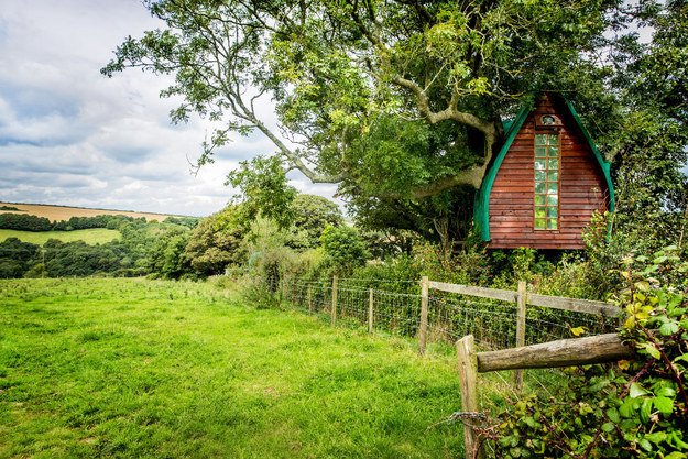 Wake up to Cornish birdsong in your own treehouse